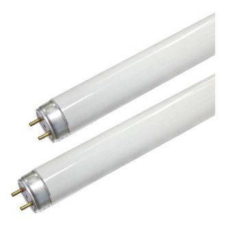 Lâmpada Ultravioleta P/ mata Moscas T9 230V / 10W