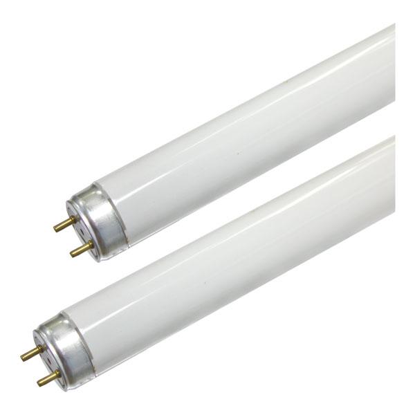 Lâmpada Fluorescente 6500K T8 230V / 24W